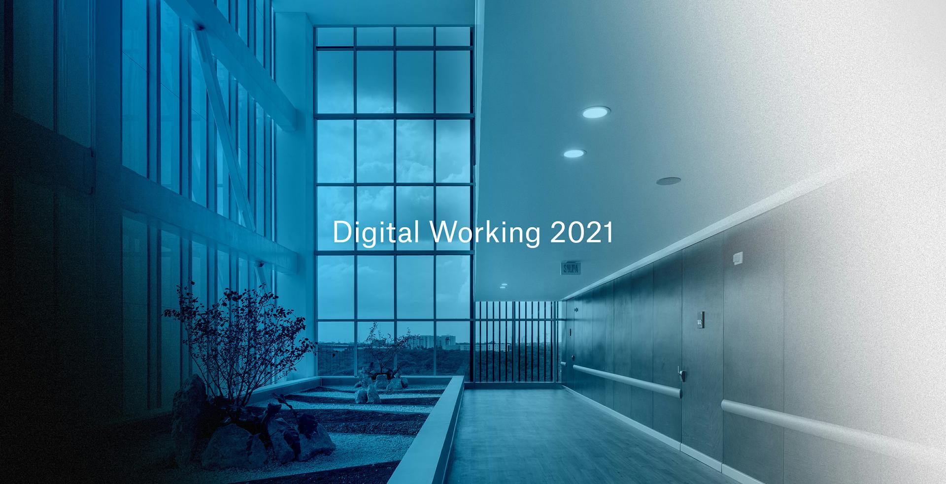 Portada Working 2021 horiz