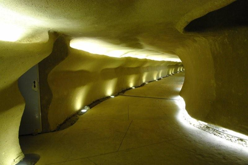 Tunel de paisagismo 02