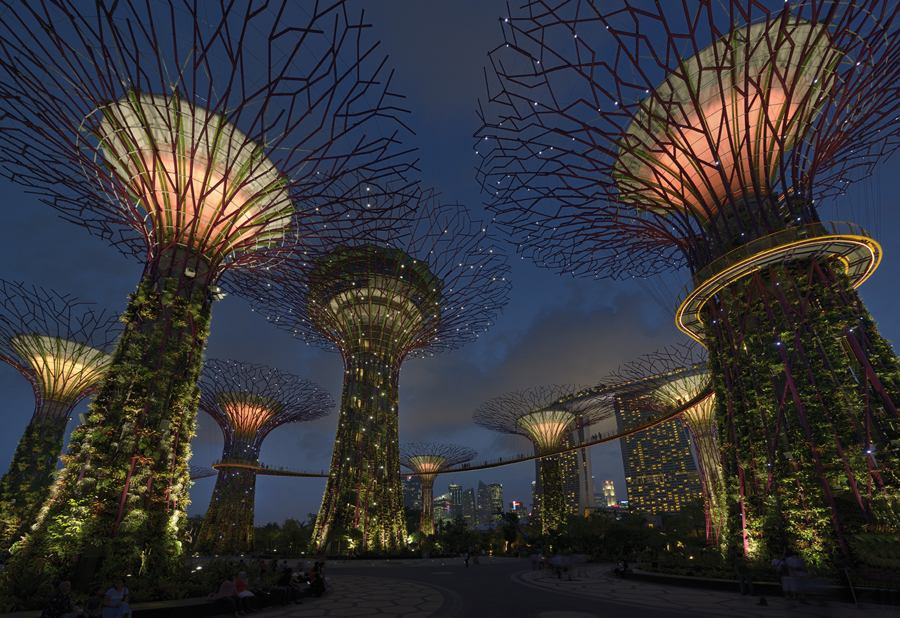 Gardens by The Bay, Marina South